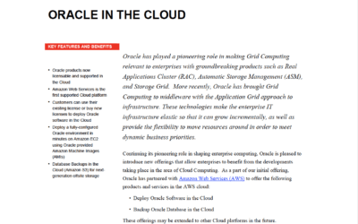 Oracle in the Cloud